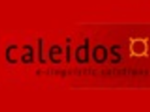 CALEIDOS TRANSLATIONS S.L.
